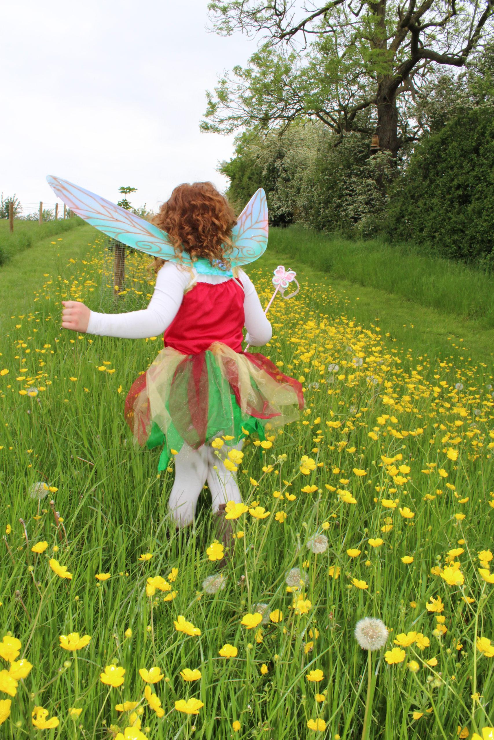 Fairy Trail