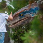 Boy patting dinosaur