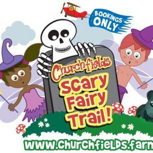 Scary Fairy 2020